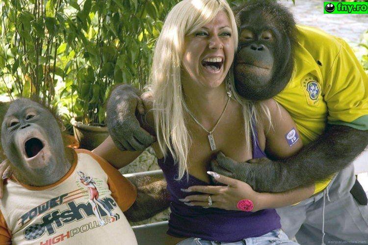 O maimuta desteapta imagini haioase