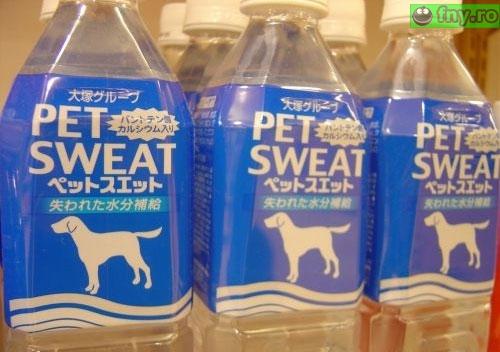 Pet sweat imagini haioase