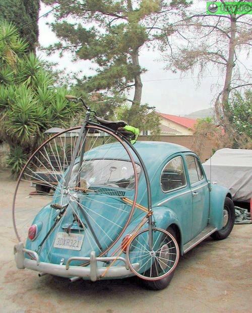 Cu bicicleta la plimbare imagini haioase
