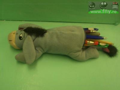 Sarmanul magarus imagini haioase