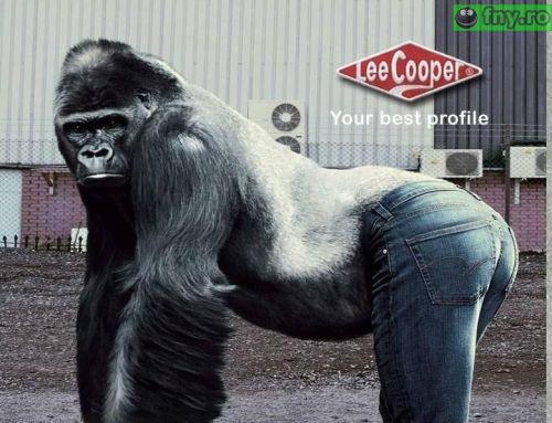 Blugi Lee Cooper imagini haioase