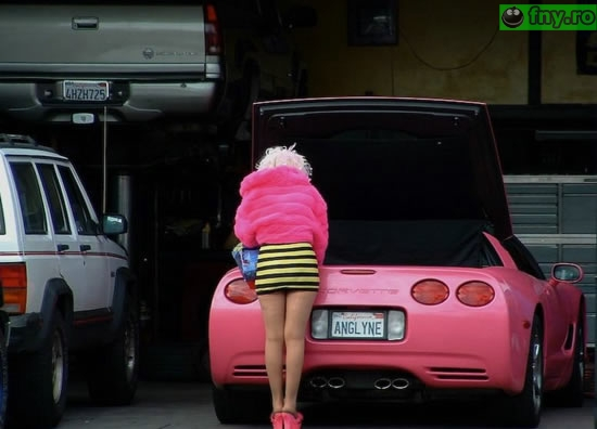 O viata roz imagini haioase