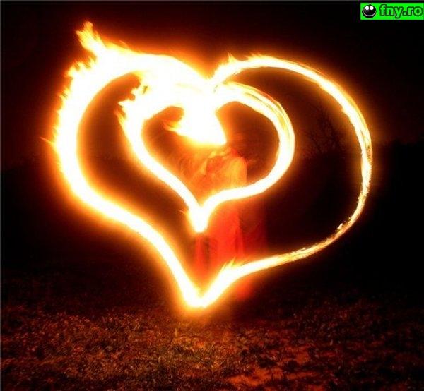 Inimi de foc imagini haioase