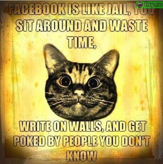 FB este ca inchisoarea imagini haioase