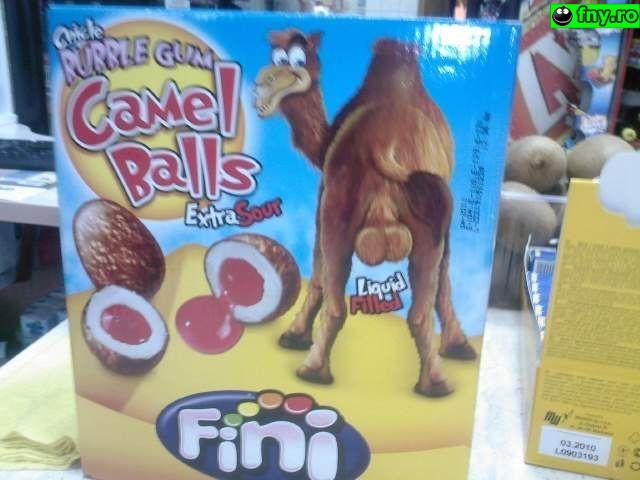 Camel balls imagini haioase
